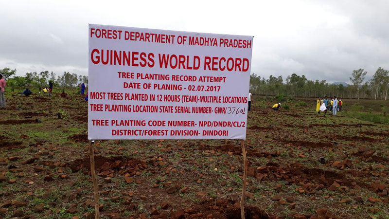 1 5m volunteers in india plant record breaking 66 million trees in 12 hours 2 1.5m Volunteers in India Plant Record Breaking 66 Million Trees in 12 Hours