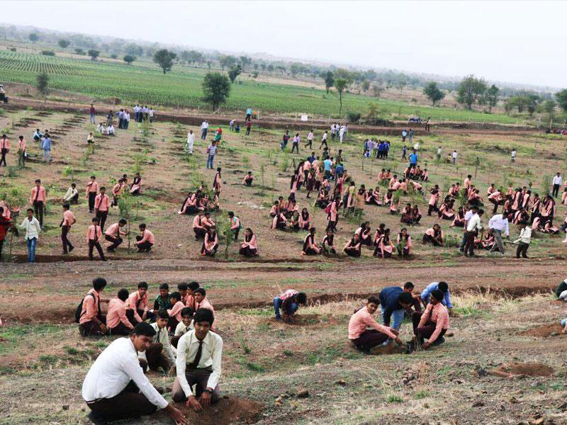 1 5m volunteers in india plant record breaking 66 million trees in 12 hours 5 1.5m Volunteers in India Plant Record Breaking 66 Million Trees in 12 Hours