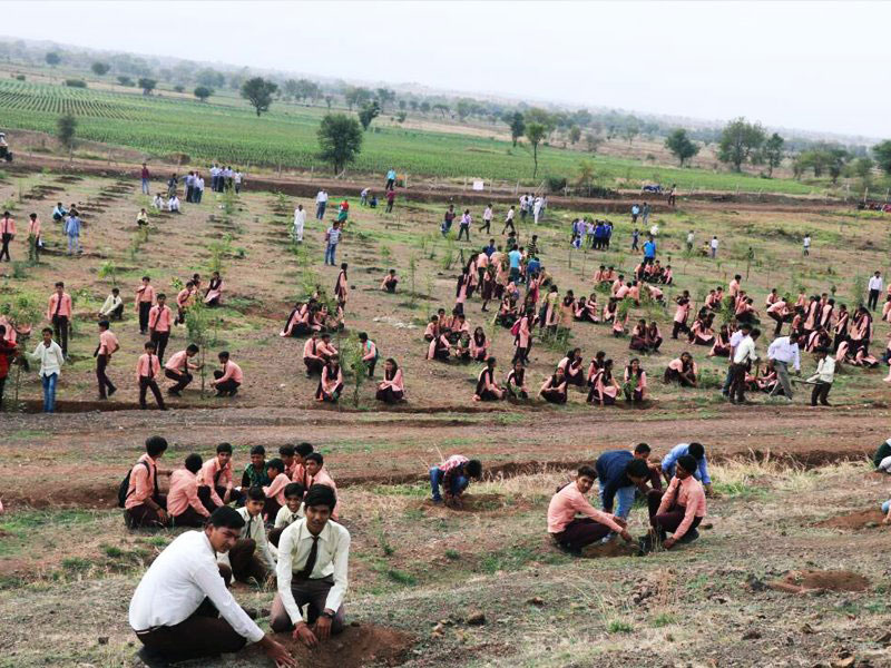 1 5m volunteers in india plant record breaking 66 million trees in 12 hours 5 1.5m Volunteers in India Plant Record Breaking 66 Million Trees in 12 Hours