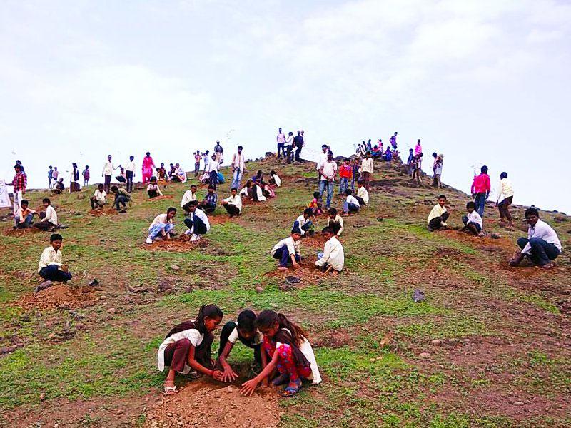 1 5m volunteers in india plant record breaking 66 million trees in 12 hours 6 1.5m Volunteers in India Plant Record Breaking 66 Million Trees in 12 Hours