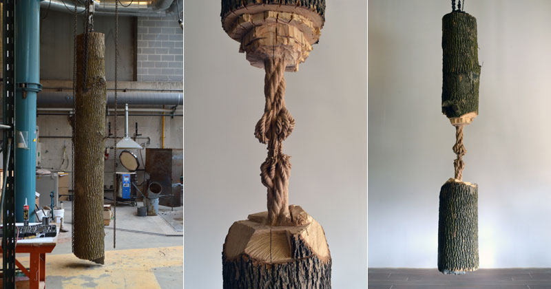 schrodingers wood by maskull lasserre 8 This Was Carved from a Single Ash Tree Trunk
