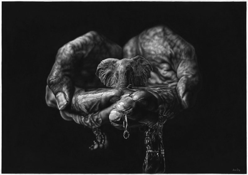 hyper realistic pencil drawings by jono dry 8 These Giant Pencil Drawings by Jono Dry are INSANE