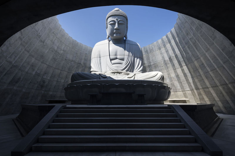 the hidden buddha surrounded by a hill of lavender 2 The Hidden Buddha Surrounded by a Hill of 150,000 Lavenders