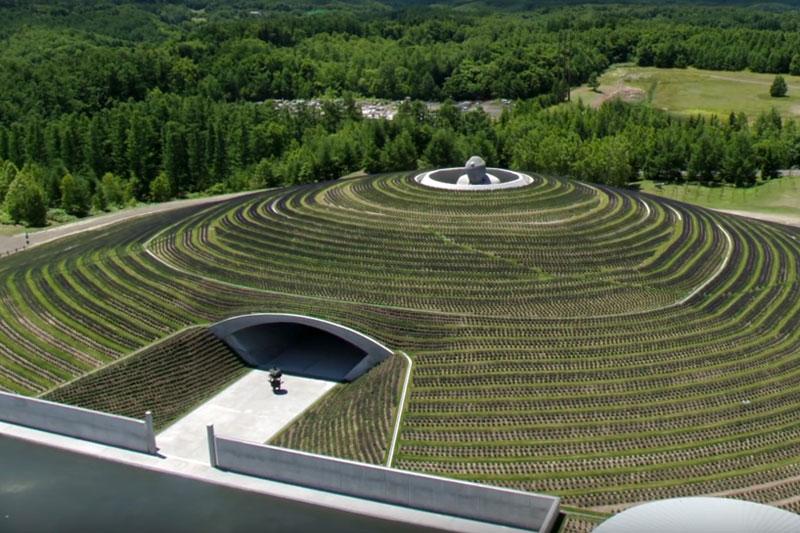 hidden buddha lavender sapporo japan cemetery makomanai takino