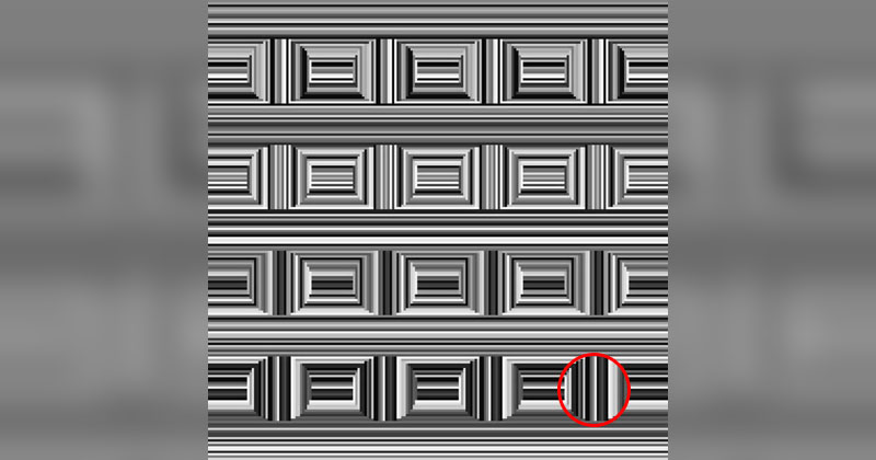 There are 16 Circles in this Image. It's Like a Simpler 'MagicEye'