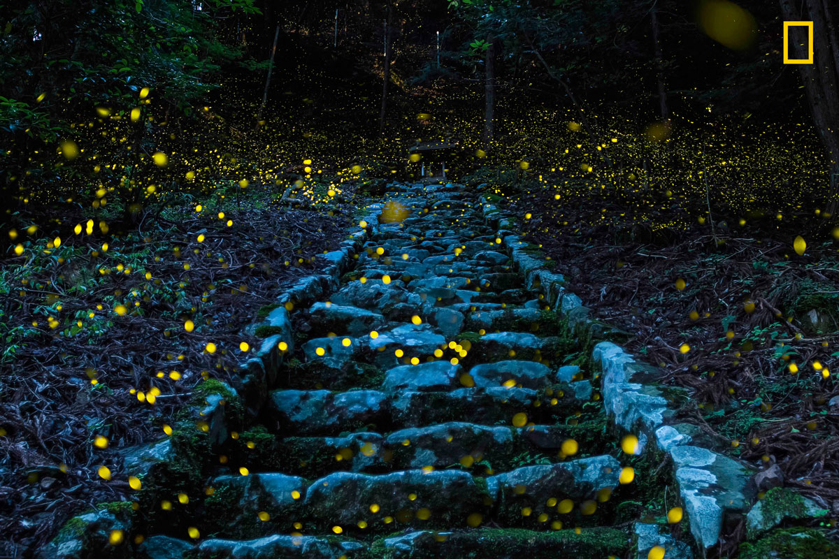 yourshot tpoy nature hm2 takafuji The Winners of the 2017 National Geographic Travel Photographer of the Year Contest
