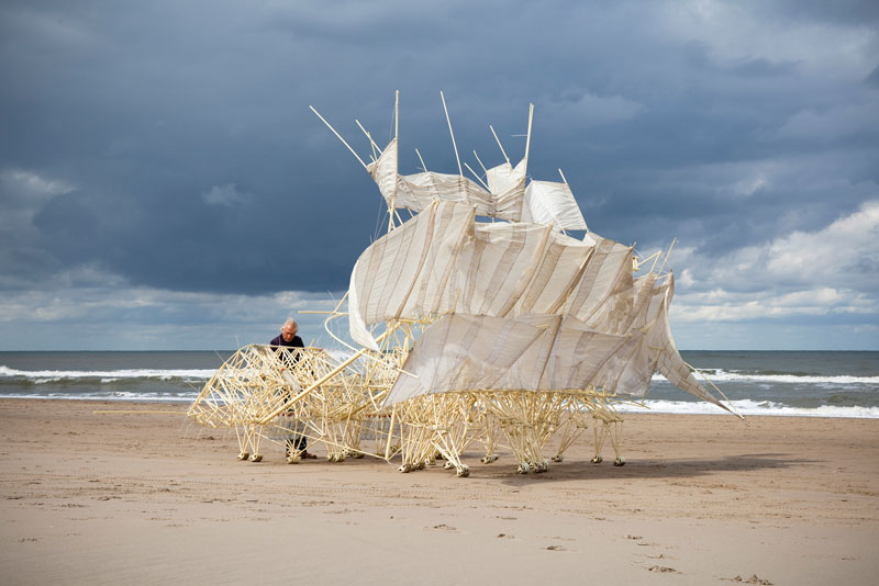 kinetic beach walkers powered by the wind by theo jansen 12 Strandbeests: The Kinetic Beach Walkers Powered by the Wind