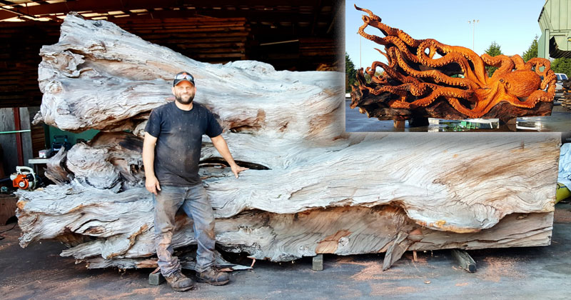 Artist Transforms Fallen Redwood Into Giant Octopus (15 Photos)