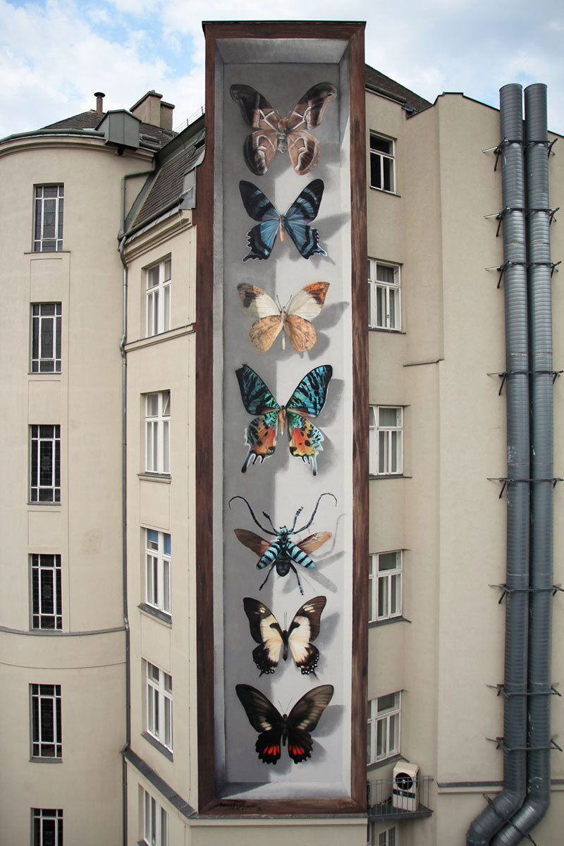 3d buterfly specimen boxes by mantra 3 Artist Transforms Walls Into Giant 3D Specimen Boxes for Butterflies