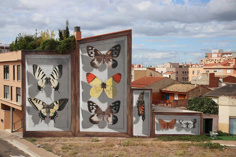 3d buterfly specimen boxes by mantra 4 Artist Transforms Walls Into Giant 3D Specimen Boxes for Butterflies
