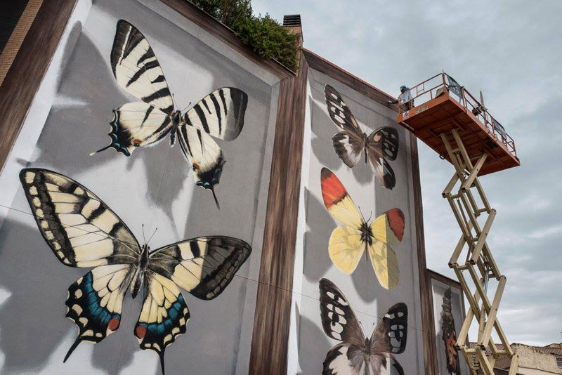 3d buterfly specimen boxes by mantra 5 Artist Transforms Walls Into Giant 3D Specimen Boxes for Butterflies