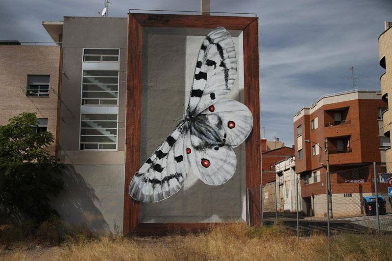 3d buterfly specimen boxes by mantra 6 Artist Transforms Walls Into Giant 3D Specimen Boxes for Butterflies