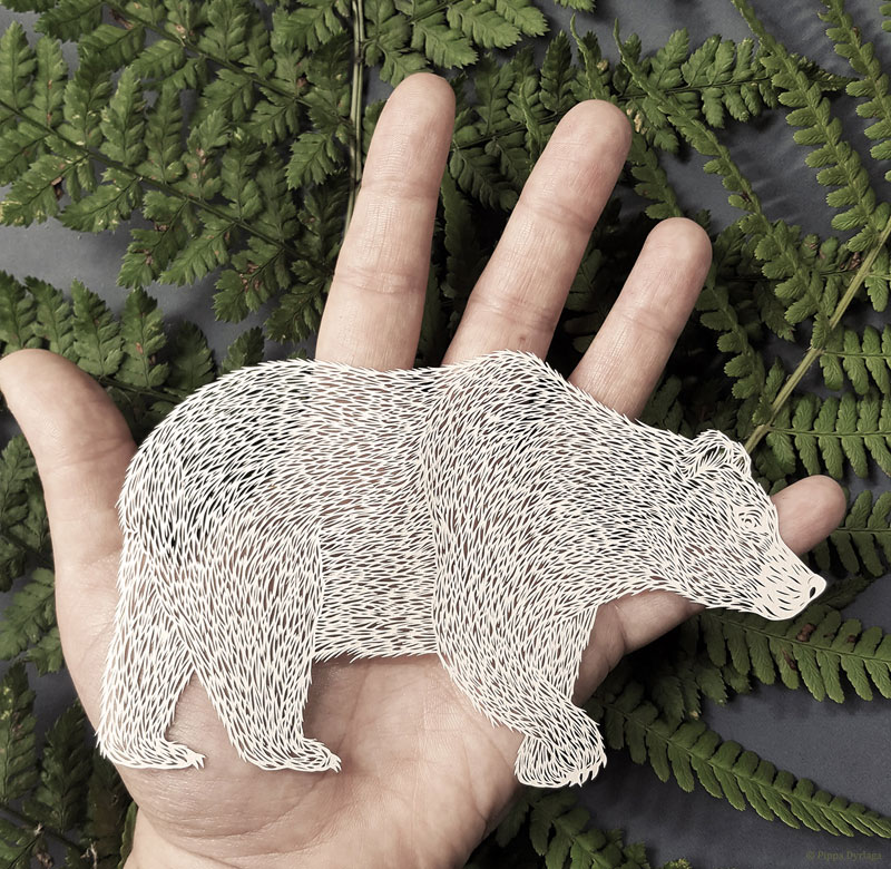 amazing hand cut paper animals by pippa dyrlaga 1 Amazing Hand Cut Paper Animals by Pippa Dyrlaga