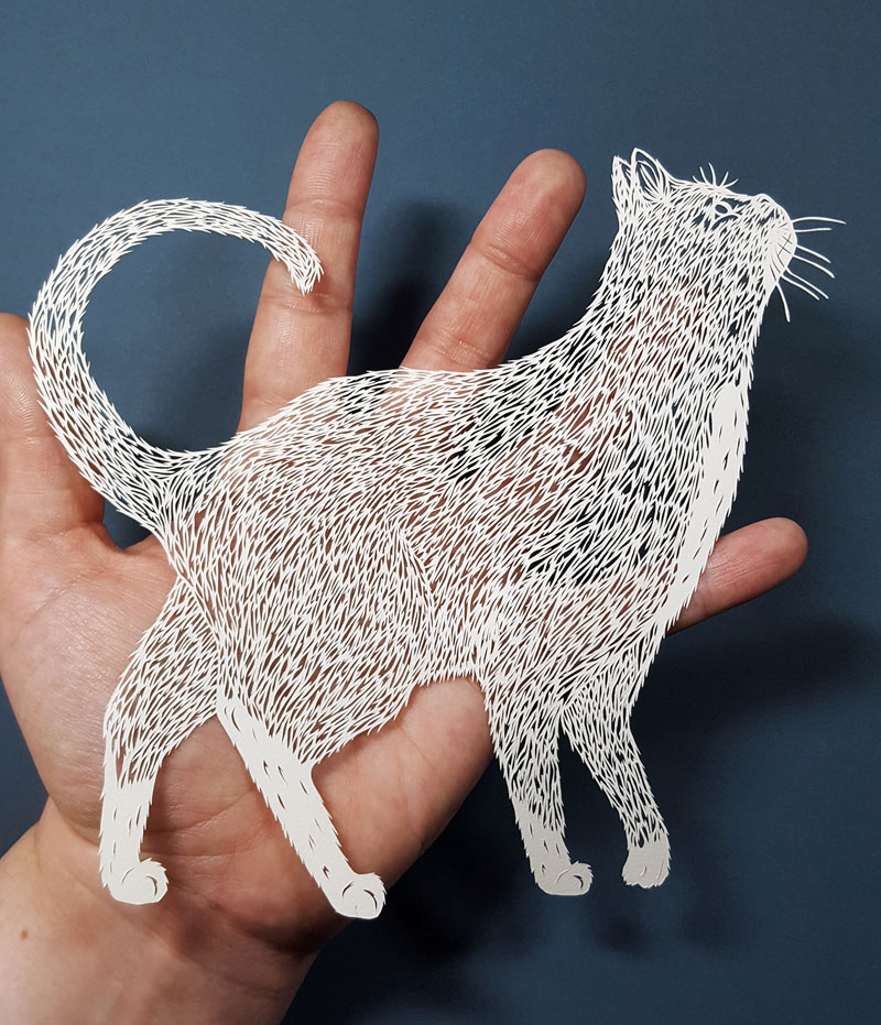 amazing hand cut paper animals by pippa dyrlaga 3 Amazing Hand Cut Paper Animals by Pippa Dyrlaga