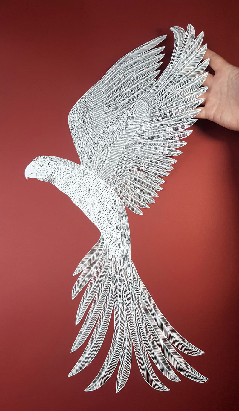 amazing hand cut paper animals by pippa dyrlaga 7 Amazing Hand Cut Paper Animals by Pippa Dyrlaga