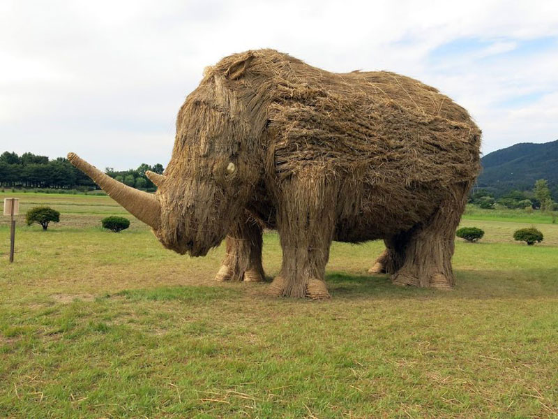 giant straw animals japan wara art festival 2017 11 Every Year Japanese Art Students Get Together and Make Giant Animals Out of Straw
