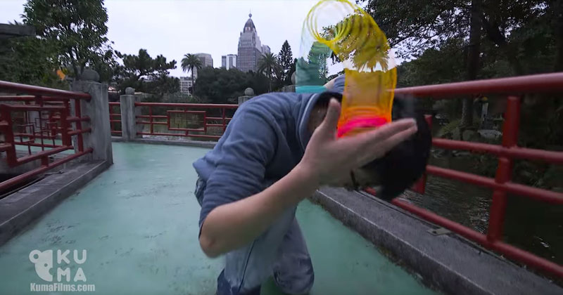 Remember Slinkies? People are Now Doing Awesome Tricks WithThem