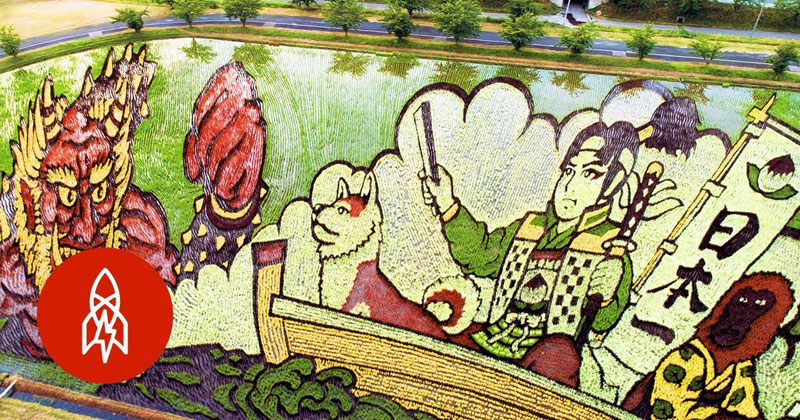 once a year this japanese town comes together to grow masterpieces