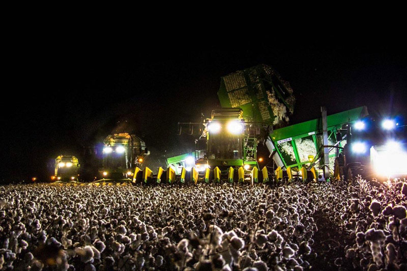 cotton harvester at night looks like a concert crowd When You Realize the Concert Crowd is a Cotton Harvester at Night