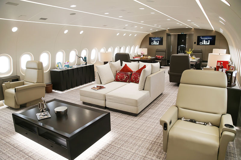 inside private boeing 787 8 dreamliner 3 Inside the Worlds Only Private 787 Dreamliner (10 Photos)