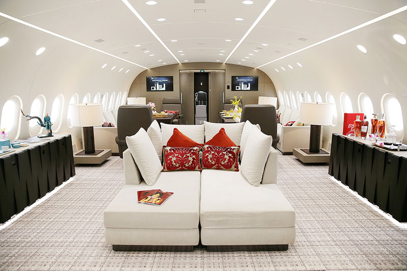 inside private boeing 787 8 dreamliner 4 Inside the Worlds Only Private 787 Dreamliner (10 Photos)
