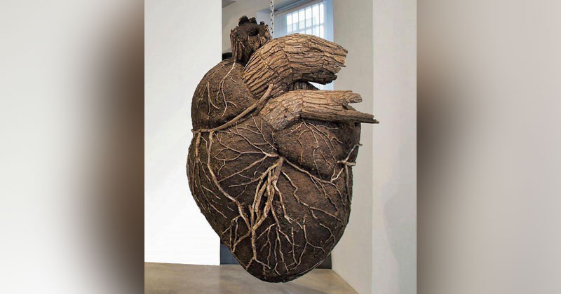 Picture of the Day: Heart andSoil