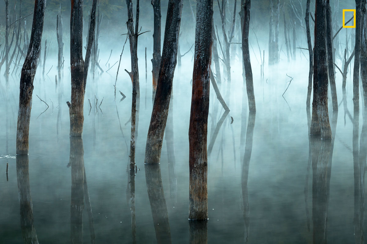 ngnp honmen1 landscapes The 2017 Nat Geo Nature Photographer of the Year Winners are Here and Amazing