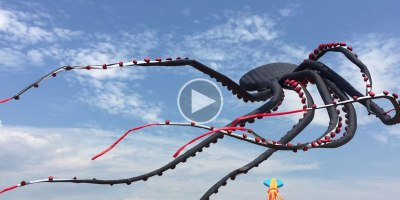 This Giant Flying Octopus Kite is Absolutely Mesmerizing
