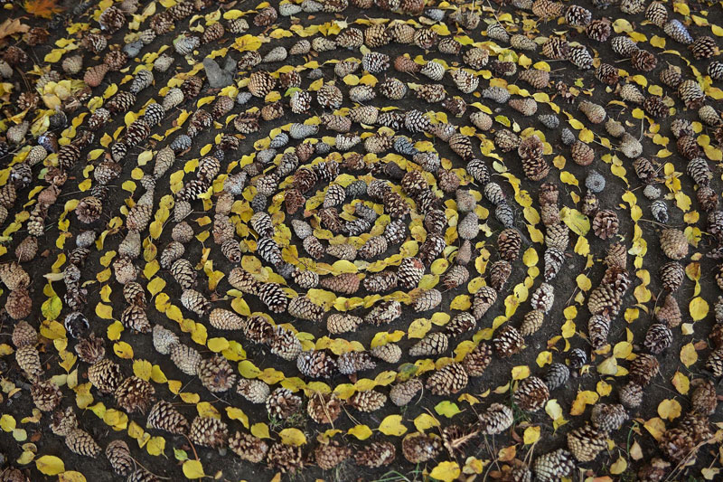 Artist Arranges Natural Objects Into Ephemeral Patterns And Designs Mesmerizing Patterns And Designs