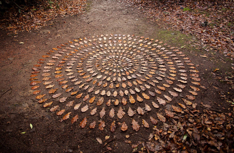 james blunt arranges natural objects into ephemeral patterns and designs 12 Artist Arranges Natural Objects Into Ephemeral Patterns and Designs