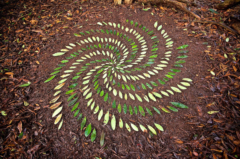 james blunt arranges natural objects into ephemeral patterns and designs 18 Artist Arranges Natural Objects Into Ephemeral Patterns and Designs