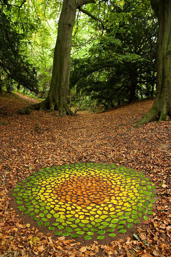 james blunt arranges natural objects into ephemeral patterns and designs 6 Artist Arranges Natural Objects Into Ephemeral Patterns and Designs