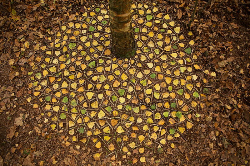 james blunt arranges natural objects into ephemeral patterns and designs 8 Artist Arranges Natural Objects Into Ephemeral Patterns and Designs