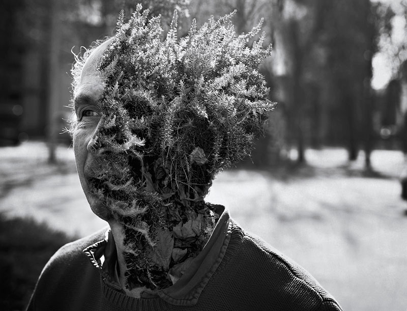 treebeard by cal redback 3 7 Surreal Portraits of Plants Taking Over Faces