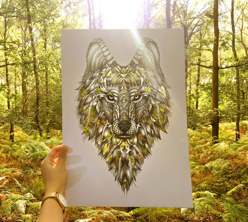 faye halliday cutouts filled in by nature 4 Artist Makes Intricate Animal Cutouts and Lets Nature Fill in the Rest