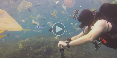 Guy Goes Scuba Diving in Bali to See Jellyfish, Gets Trash Instead