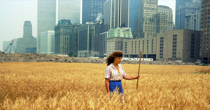 In 1982, An Artist Harvested Two Acres of Wheat on Land Worth $4.5 Billion