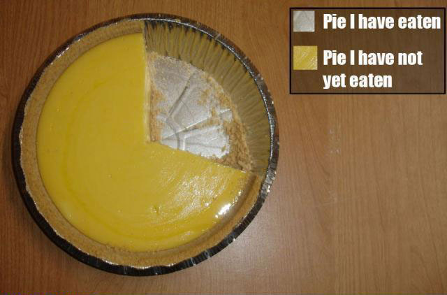 top 5 most meta accurate funny pie charts 8 The 5 Most Accurate Pie Charts Ever
