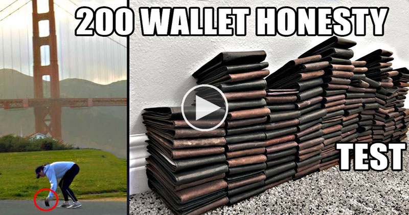 Dropping 200 Wallets Across America Produced Some SurprisingResults