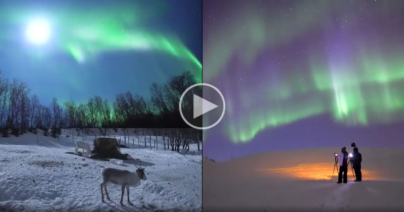 This Video Really Captures the Awe and Wonder of the NorthernLights