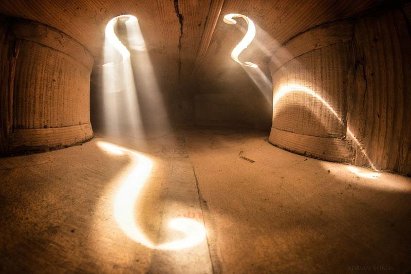 photos inside a cello 8 Amazing Photos from the Inside of a Cello