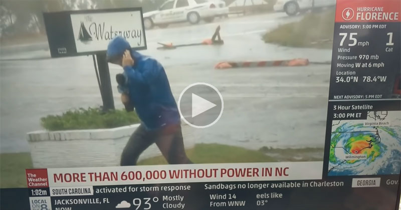 Weather Channel Reporter Makes His Dramatic Bid for Daytime Emmy