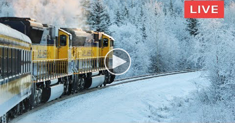 If You Need a Break There's a 24/7 Live Stream of a Train Going AcrossNorway