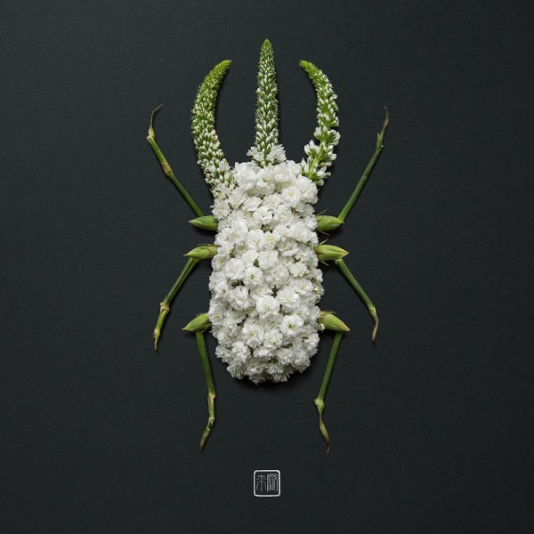 animal portraits made from flowers raku inoue 3 When Kingdoms Collide: Animal Portraits Made from Floral Arrangements