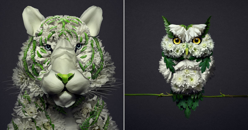 When Kingdoms Collide: Animal Portraits Made from Floral Arrangements