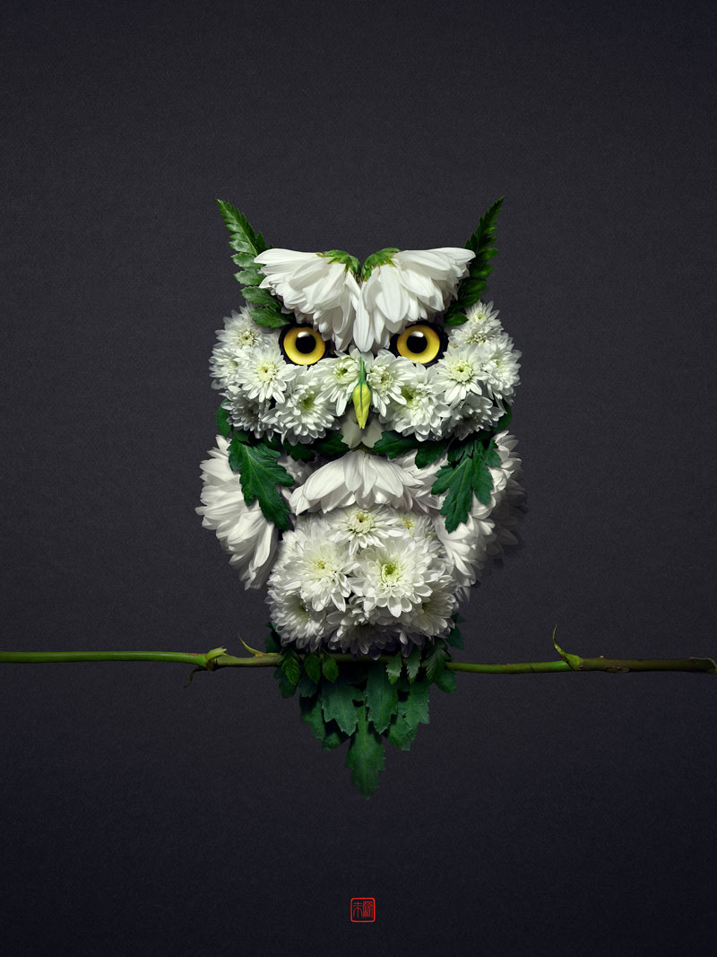 animal portraits made from flowers raku inoue 6 When Kingdoms Collide: Animal Portraits Made from Floral Arrangements