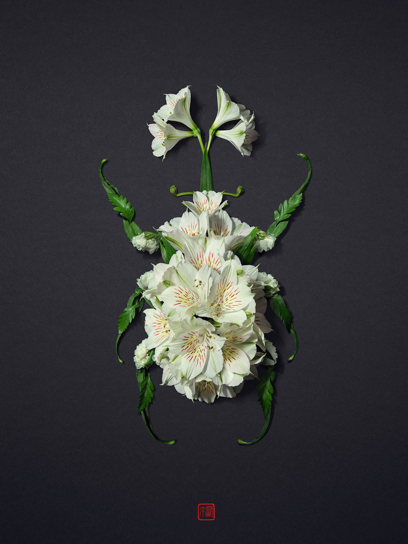 animal portraits made from flowers raku inoue 8 When Kingdoms Collide: Animal Portraits Made from Floral Arrangements