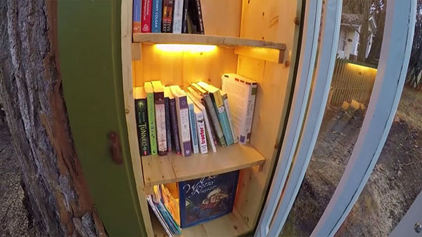 book tree library in old trunk sharalee armitage 8 Woman Forced to Remove Dying Tree, Turns It Into Tiny Library Instead