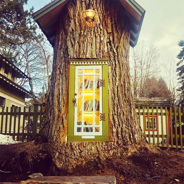 book tree library in old trunk sharalee armitage 9 Woman Forced to Remove Dying Tree, Turns It Into Tiny Library Instead