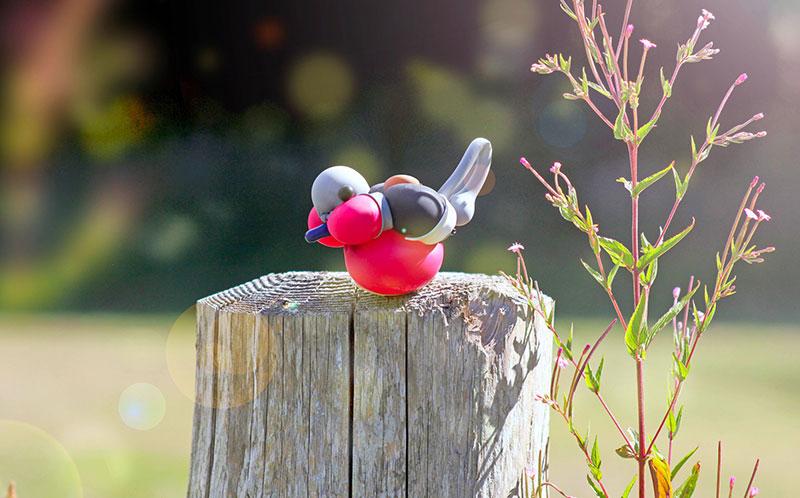 balloon birds by terry cook 2 Balloon Birds Caught in Their Natural Habitat